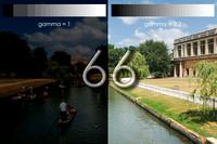 bokeh photographic (Alistair Grant) - Freelance Photographer Cambridge Blog 66 -Glorious Gamma
