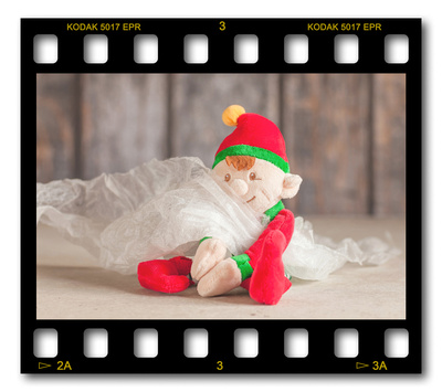 Not #ElfOnTheShelf but #sELFie in the #Photography #Studio. DAY 13: Diffusing Scrim.  A bit of festive fun illustrating some of the photographic equipment I use to shoot Food Photography, Portrait Photography, Event Photography, Corporate Photography & Product Photography. © bokeh photographic (Alistair Grant): Freelance Photographer, St Ives, Cambridge and across the UK.