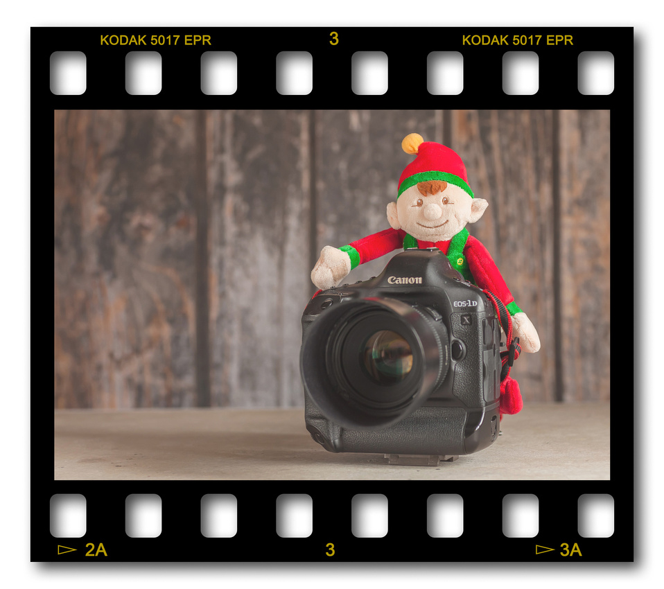 Not #ElfOnTheShelf but #sELFie in the #Photography #Studio. DAY 25: Canon 1Dx and 50mm.  A bit of festive fun illustrating some of the photographic equipment I use to shoot Food Photography, Portrait Photography, Event Photography, Corporate Photography & Product Photography. © bokeh photographic (Alistair Grant): Freelance Photographer, St Ives, Cambridge and across the UK.