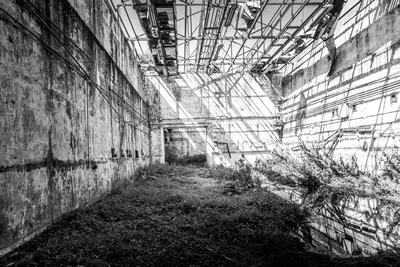 Fotografia #3 by bokeh photographic (Alistair Grant) Freelance Photography Cambridge.