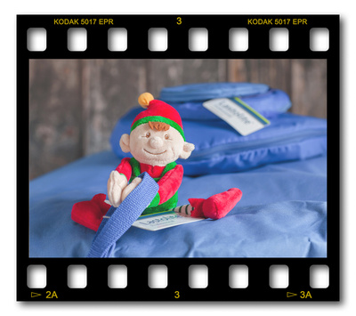 Not #ElfOnTheShelf but #sELFie in the #Photography #Studio. DAY 9: Lastolite Backdrops.  A bit of festive fun illustrating some of the photographic equipment I use to shoot Food Photography, Portrait Photography, Event Photography, Corporate Photography & Product Photography. © bokeh photographic (Alistair Grant): Freelance Photographer, St Ives, Cambridge and across the UK.