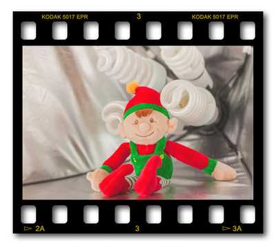 Not #ElfOnTheShelf but #sELFie in the #Photography #Studio. DAY 14: Quadlite Continuous.  A bit of festive fun illustrating some of the photographic equipment I use to shoot Food Photography, Portrait Photography, Event Photography, Corporate Photography & Product Photography. © bokeh photographic (Alistair Grant): Freelance Photographer, St Ives, Cambridge and across the UK.