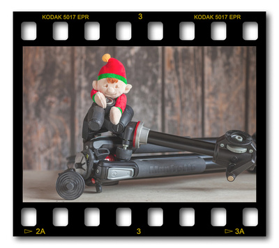 Not #ElfOnTheShelf but #sELFie in the #Photography #Studio. DAY 10: Tripods.  A bit of festive fun illustrating some of the photographic equipment I use to shoot Food Photography, Portrait Photography, Event Photography, Corporate Photography & Product Photography. © bokeh photographic (Alistair Grant): Freelance Photographer, St Ives, Cambridge and across the UK.